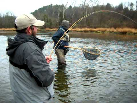 South holston brown trout youtube for South holston river fishing report