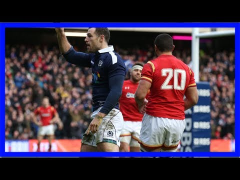Scottish rugby at an all-time high as thoughts now turn to six nations
