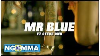 MR BLUE Ft STEVE RNB - POMBE NA MUZIKI (Official Video)