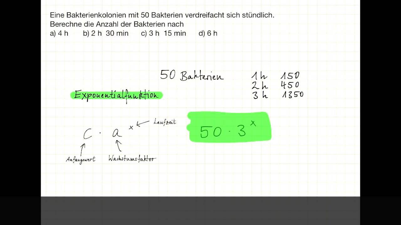Beste Stündliche Rechnungsvorlage Bilder - Beispiel Anschreiben für ...