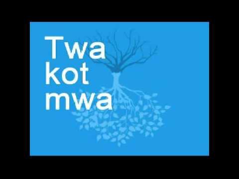 Twa Kot Mwa