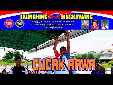 Kontes Burung Cucak Rawa | Launching BnR Singkawang