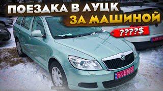 Дешевые цены на АвтоРынке в Луцке - обзор цен и покупка авто!