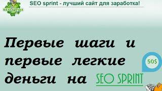 SEO sprint видео урок , заработок в интернете!