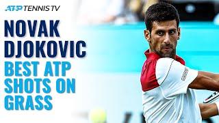 Novak Djokovic: Best-Ever ATP Shots On Grass!