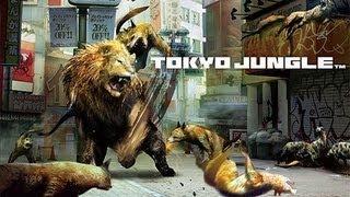 Directo - TOKYO JUNGLE Road To Pollo