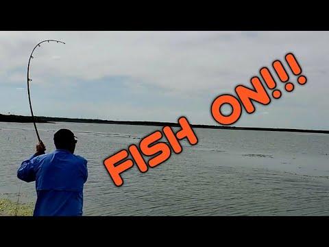 Catfishing In Texas! Large Blue Catfish DISCOVERED!