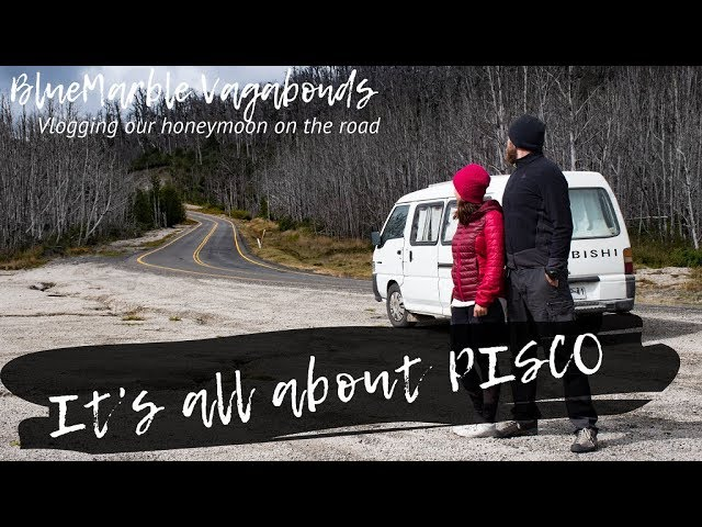 It's all about PISCO | #VANlife | Vlog#12