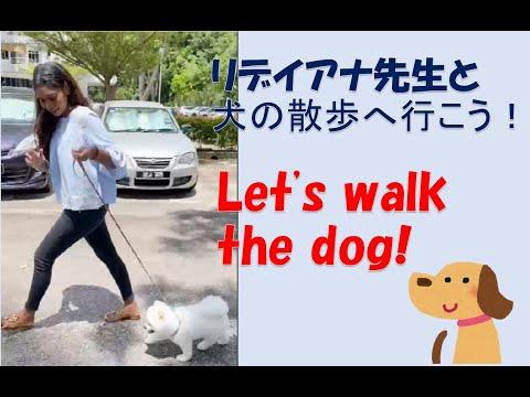 リデイアナ先生と一緒に犬のお散歩へ行こう!