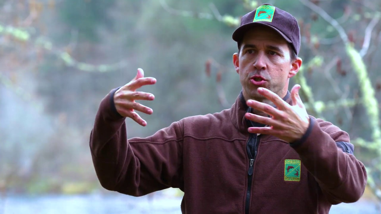 Oregon Wildlife Foundation 2019 Highlighted Projects