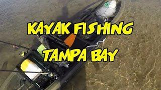 Kayak Fishing Rocky Creek in Tampa Bay