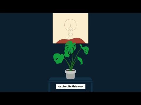 Future Tech, Autonomy, Robot companions, Gene-editing, Sentient plants