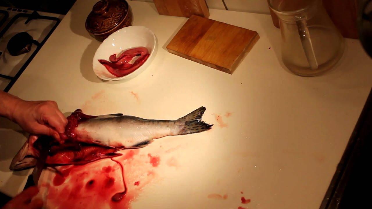 Рыба свежемороженая купить в санкт-петербурге. Хит дальневосточный лосось кижуч купить красную рыбу в санкт-петербурге по выгодной цене 700 руб. Добавить в корзину купить за 5 сек. Хит филе трески без кожи на экспорт 6. 81 кг. Филе трески 6. 8 кг. На экспорт купить в спб. 3850 руб. Добавить в.