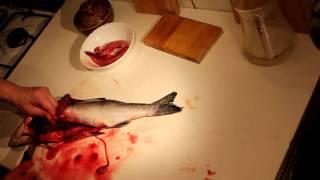 Чистка и разделка рыбы (красной) в домашних условиях(Чистка и разделка рыбы (красной) в домашних условиях. Как Почистить и разделать красную и любую другую рыбу..., 2011-02-11T12:13:47.000Z)