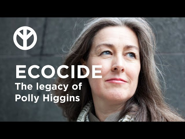 Stop Ecocide: The legacy of Polly Higgins