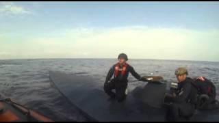 بالفيديو .. خفر السواحل الأمريكية يستولي على غواصة تحمل أكثر من 5 أطنان من الكوكايين