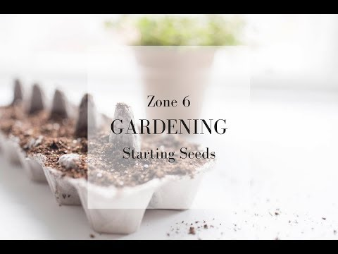 SPRING GARDEN PREPARATION | Zone 6 Gardening