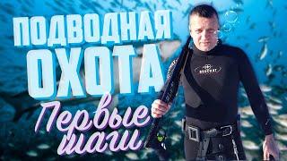 Подводная охота первые шаги Надеваем костюм и ловим щуку