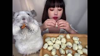 ASMR MUKBANG EATING SHOW 아몬드 젤…