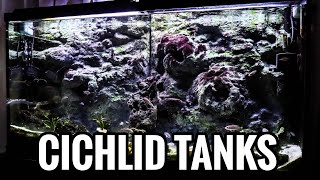 How To Aquascape Your African Cichlid Tank Youtube