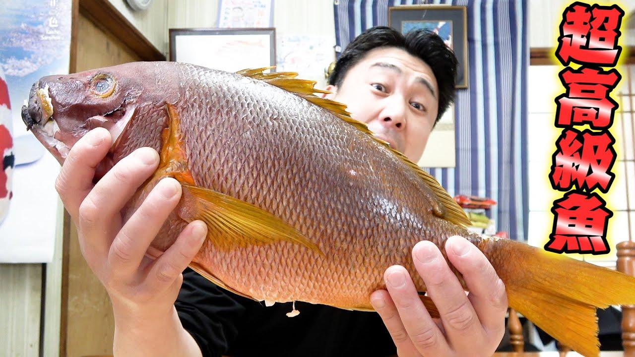 一生に一度食べれるかどうか...完璧に仕立てられた超高級魚を兄貴と食べてみました!!!