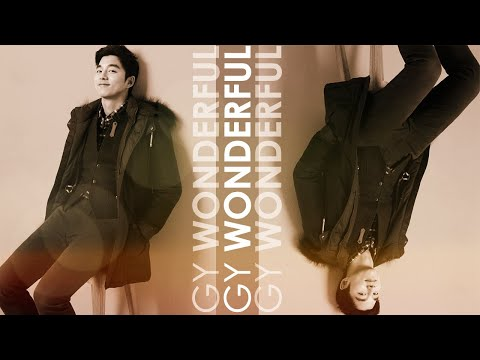 Wonderful - Gong Yoo MV