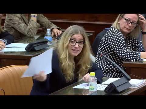 Rosa María Mateo termina pidiendo amparo tras otra tensa sesión en el Congreso