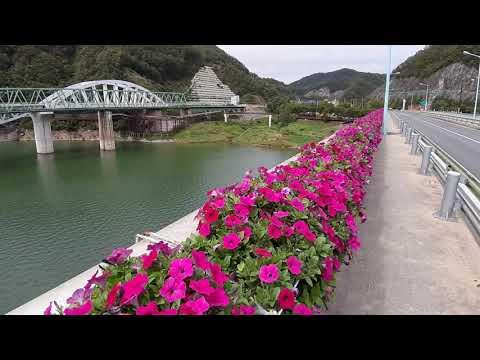 단양여행 상진대교에서 본 단양강(남한강) ,단양철교,잔도길