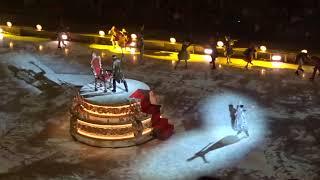 Ледовое Шоу АЛЕНЬКИЙ ЦВЕТОЧЕК Татьяны Навки 2018-2019 Дворец спорта Мегаспорт