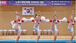 제1회 노원구협회장배 치어리딩 대회- 서울 올스타치어 …