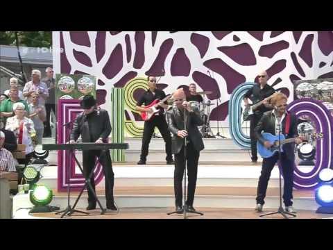 Bee Gees Tribute Band - Tragedy [ZDF-Fernsehgarten] (2016)