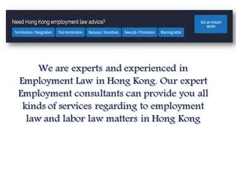 Professional Employment Law Expert Advice in Hong Kong