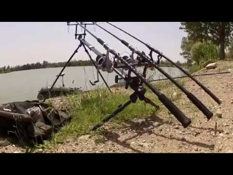 Quantum Radical: Andreas Wols - Summertime Fishing
