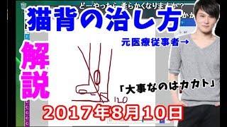 【うんこちゃん】元医療従事者が猫背の治し方を解説【2017/08/10】 thumbnail