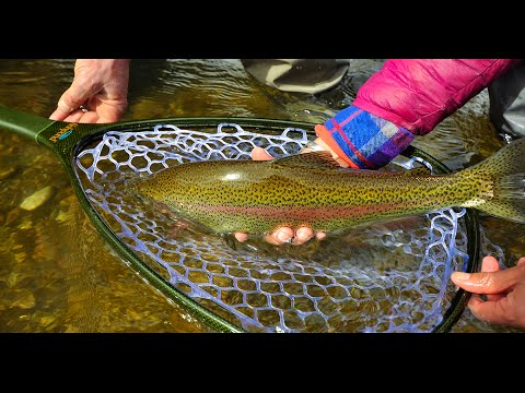 Early Spring On The Yakima River With Red's Fly Shop