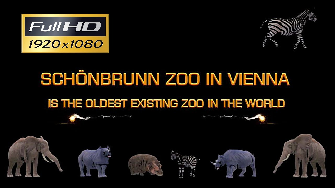 SCHÖNBRUNN ZOO IN VIENNA - IS THE OLDEST EXISTING ZOO IN THE WORLD - HD2
