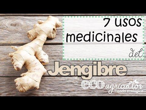 Para q sirve el jengibre como planta medicinal