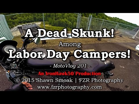 Dead Skunk Among Labor Day Campers! | Iron 883 | MotoVlog 201