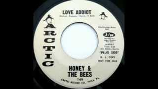 HONEY & THE BEES - Love Addict