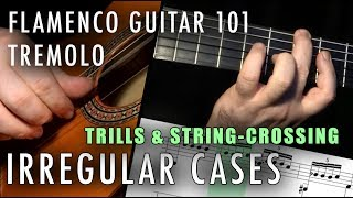 Flamenco Guitar 101 - 24 - Tremolo - Irregular Cases