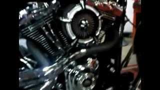 Préparation moteur sur Softail Blackline