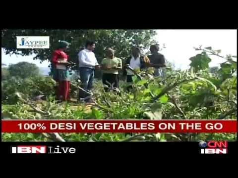 Delhi 27-year-old's 'I say organic' helps people buy vegetables online Delhi Videos