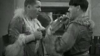 The Three Stooges: moe larry curly sparkling water fight