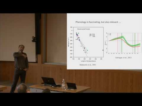 Tree phenology and climate change - WSL Distinguished Lecture 06 12 2016