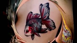 Тату золотая рыбка на фото для статьи про рисунок золотой рыбки в татуировке