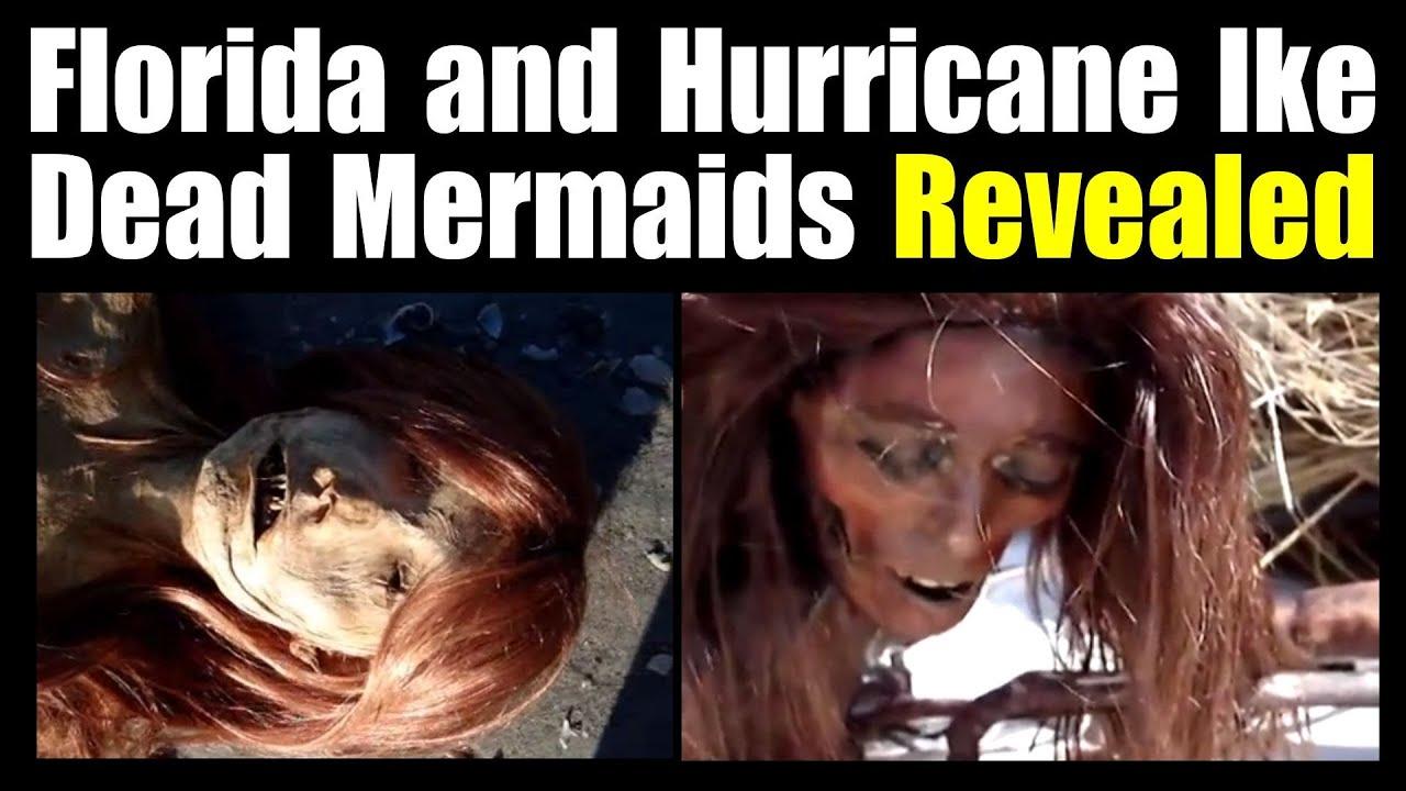 Dead Mermaids Source Revealed