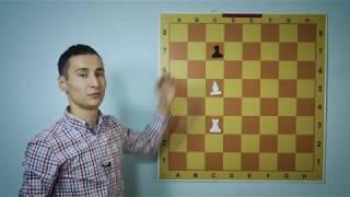 Как ходит ладья, слон и ферзь - шахматы для начинающих
