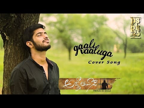 Gaali Vaaluga Full Video Cover Song- A Tribute To #Pspk