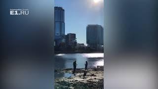Кладоискатели начали поиск сокровищ на берегу обмелевшего пруда