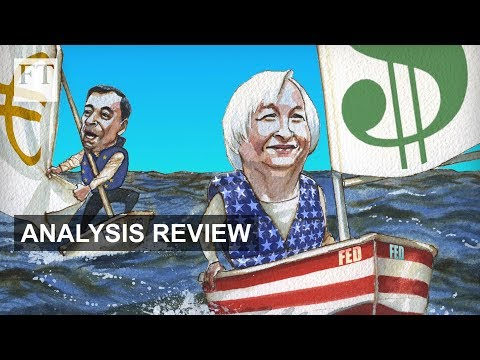 A world of central bank divergence   Analysis Review
